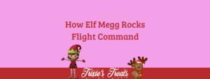 Elf Megg Rocks Flight Command