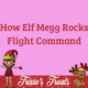 Elf Megg Rocks Flight Command