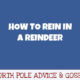 How to Rein in a Reindeer